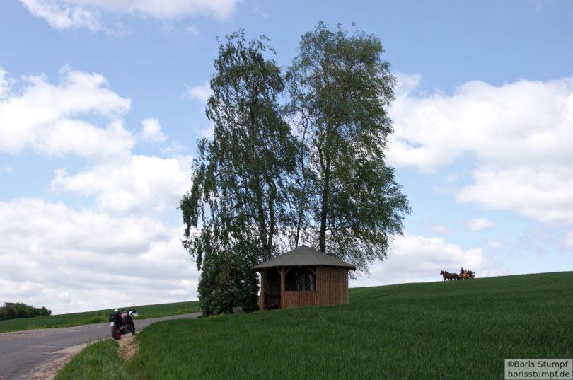 Begegnung im Odenwald