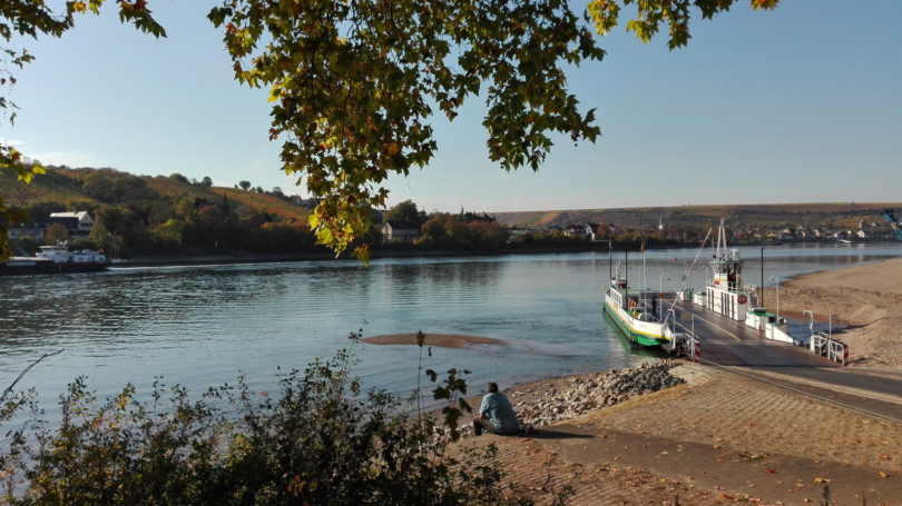 Oktobersommer am Rheinufer